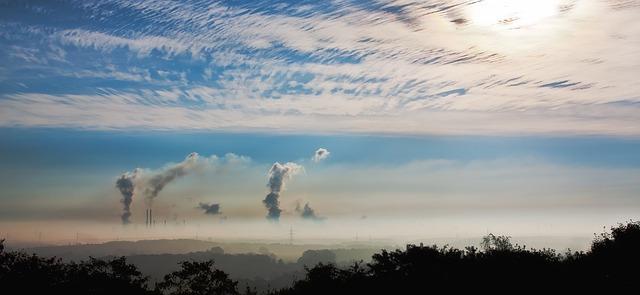 Piante e smog, come proteggerle